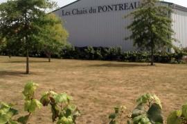 Le Chai du Pontreau : vous recevoir en toute convivialité
